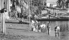 Children washing clothes in a river in Saint Laurent. More than twenty rivers find their way to the Atlantic Ocean from French Guiana.