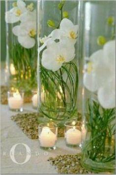 orchid wedding centerpieces wedding flowers - Page 63 of 101 - Wedding Flowers & Bouquet Ideas Orchid Centerpieces, Table Centerpieces, Wedding Centerpieces, Wedding Table, Wedding Decorations, Table Decorations, Centerpiece Ideas, Wedding Ideas, Wedding Stuff