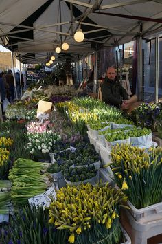 Columbia Road by Les photos de Vero, via Flickr