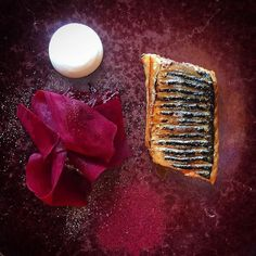 Mackerel and beetroot ..