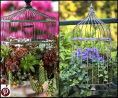 Bird Cage Planters Birdcage Planter, Cottage Ideas, Bird Cage, Bird Feeders, Planters, Real Estate, Yard, Outdoor Structures, Gardening