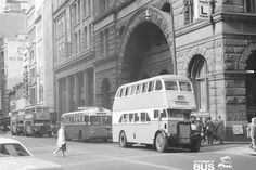 Buses stop on George Street, near corner of Angel Place in the Sydney CBD in Photo: Sydney Bus Museum: Alan Travers Sydney Area, Sydney City, Old Signs, Sydney Australia, The Good Old Days, Historical Photos, Old Photos, Past, Around The Worlds