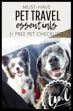 Travel Essentials To Pack Your Dog [+ Free Pet Travel Checklist] | What to pack your dog for vacation Dog Travel, Free Travel, Travel News, Travel List, Free Dogs, Pet Care Tips, Dog Care, Travel Essentials, Travel Hacks