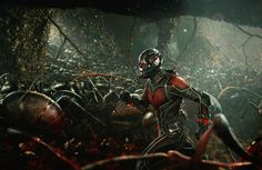 Peyton Reed Talks 'Ant-Man & The Wasp'; Goal Is To Make A 'Much Weirder' Movie