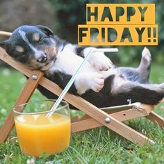 Good morning my friend hope you have Fabulous Friday! Good Morning Friday, Friday Weekend, Good Morning Good Night, Happy Weekend, Happy Sunday, Funny Weekend, Funny Morning, Morning Pics, Morning Quotes