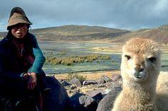 Lide Altiplano