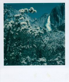 """Yosemite Falls,"" 1979, by Ansel Adams; I find this piece to be incredible for the depth of field, wide range of values, and the sharp detail. Polaroids? Hmph, who knew? JSR"