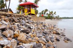 Lifeguards are on duty at Manzanilla Beach, and other beaches across Trinidad & Tobago, between 9am and 5pm or 10am and 6pm depending on the beach.