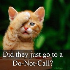 Oh how I need this.....THIS is ME...when we get to busy talking & dont follow directions!!