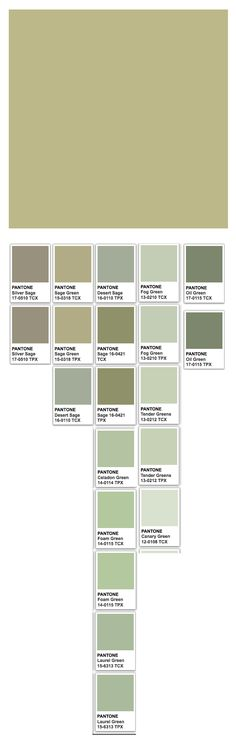 Sage (web) and related Pantone Colors