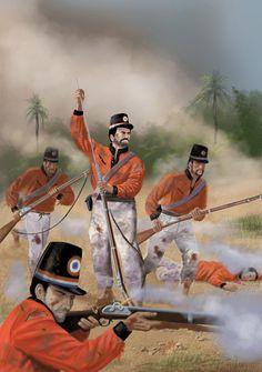 Military Uniforms, Military Art, Military History, Triple Alliance, Flash Gordon, American War, Napoleonic Wars, Gaucho, Warfare
