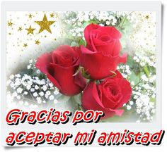 Flores Imagenes De Hermosas Animadas Gratis Wallpapers Resolution : Filesize : kB, Added on October Tagged : flores Red Flowers, Pretty Flowers, Red Roses, Happy Merry Christmas, Christmas Love, Happy Tuesday Morning, 3d Animation Wallpaper, Xmas Wallpaper, Love Cards
