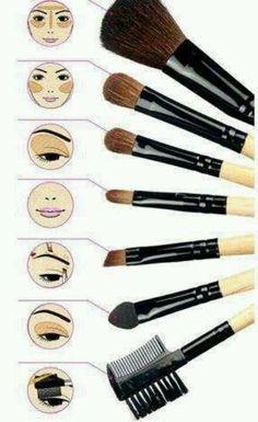 Brushes, wonderful makeup-applying brushes.