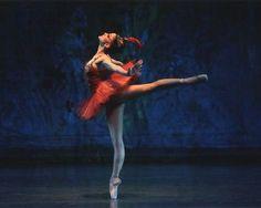 Ballet Passion Firebird Ashley Bouder ~ photo by Paul Kolnik