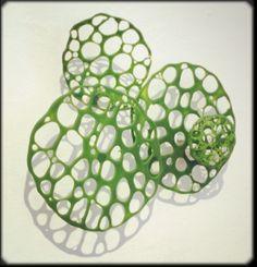 Algal bloom- fused glass powders