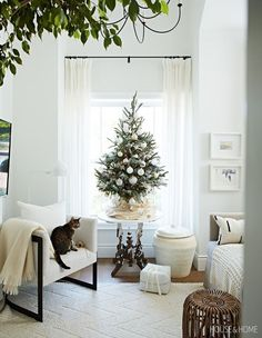 To save floor space, this small but beautiful Christmas tree takes pride of place on a side table. Tiny Christmas Trees, Christmas Tree On Table, Beautiful Christmas Trees, Christmas Table Decorations, Christmas Home, Christmas Tree For Apartment, Christmas Tree Ideas For Small Spaces, Christmas Decorations Apartment Small Spaces, Small Xmas Tree