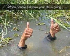 When people ask how your life is going...