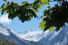Blick zum Silvrettagletscher Klosters