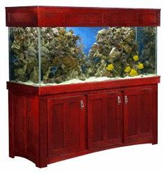 creative inspiration beautiful aquariums for home. 29 Best Home Aquarium Furniture Ideas To Beautify Your Room Shaker style aquarium cabinet image 2614798741 jpg  stand