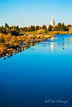 Idaho Falls Temple, verge of the Idaho Falls where the birds are lined up.  Snake River