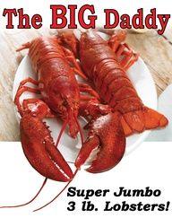 SEASONAL SPECIAL: The Big Daddy Lobsta!! 3lb Jumbo Lobster!