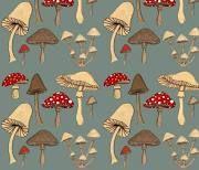 mushroom wallpaper - Google Search