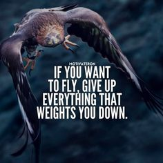 Quotes : If you want to fly give up everything that weighs you down. - Hall Of Qu. Positive Quotes : If you want to fly give up everything that weighs you down. - Hall Of Quotes Babe Quotes, Badass Quotes, Wisdom Quotes, Words Quotes, Qoutes, Sayings, Daily Quotes, Positive Quotes For Work, Motivational Quotes For Success