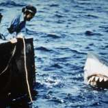 Actors Richard Dreyfuss (L) and Robert Shaw lean off the back of their boat, holding ropes as they watch the giant Great White shark emerge from the water in a still from the film, 'Jaws,' directed by Steven Spielberg. (Photo by Universal Pictures/Courtesy of Getty Images)