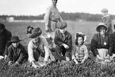 Annette Roy, the youngest worker. Said 7 years old. Picked last year. Smart's Bog, Massachusetts, 1911