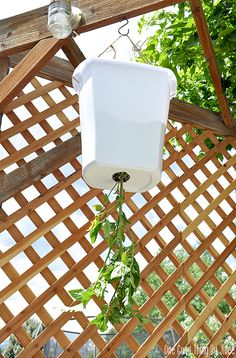 Make your own simple hanging tomato planter! This very tomato plant produced a TON of tomatoes for me last year... I'll definitely be doing this again this summer!