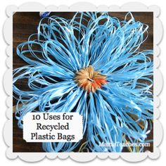 10 Uses for Recycled Plastic Bags