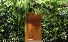 Vertical Gardens: I imagine something like this would be perfect for a the back wall of a porch