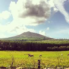 bennachie aberdeen - Google Search Aberdeen, Mountains, Google Search, Nature, Travel, Naturaleza, Viajes, Destinations, Traveling