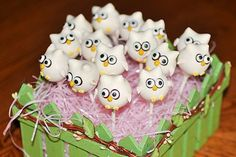 owl cake balls