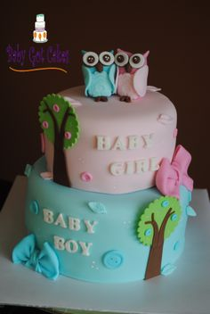 Twin Owls Baby Shower Cake - Baby shower cake for a momma expecting twins...a boy & a girl!! Covered in fondant with fondant accents. Owls handmade from fondant. Thanks for looking!