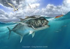 Iggy Pop - Kingfish chasing a popper Sea Fishing, Gone Fishing, Saltwater Fishing, Kayak Fishing, Fishing Reels, Fishing Trips, Fishing Knots, Fishing Tackle, Wildlife Paintings