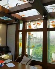 Home Room Design, Dream Home Design, Modern House Design, My Dream Home, Home Interior Design, Home Aquarium, Aquarium Fish, Casas Containers, Koi Fish Pond