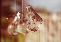 Photo listed in Fine Art Shot taken with Minolta AF 16 shares, 34 likes and 1049 views. Light Bulb, My Photos, Fine Art, Lights, Decor, Decoration, Light Globes, Lighting, Decorating