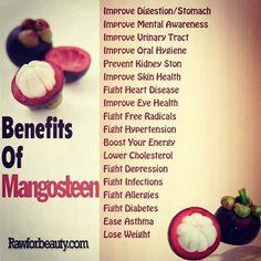 Queen of fruit Mangosteen!