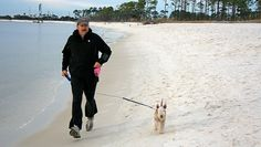 How to start an exercise program with your canine companion by your side.