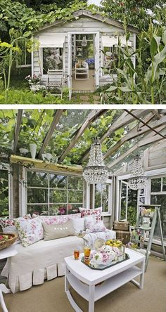 Glamorous Greenhouse. Ladder & chandelier add a nice touch.