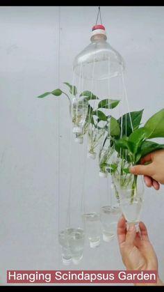 Garden Ideas With Plastic Bottles, Small Plastic Bottles, Plastic Bottle Planter, Plastic Bottle Crafts, House Plants Decor, Plant Decor, Plant In Glass, Glass Vase, Plants In Bottles
