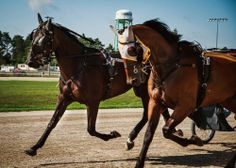 Summer Indian (right) and Traverse Seelster jogging before the Champions Match Race in August.