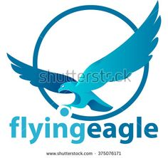 Abstract vector, shape eagle in flight with a blue circle, a symbol or logo of a company