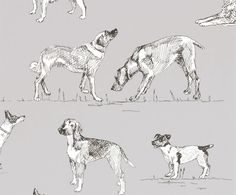 Best Friend Wallpaper A delightful wallpaper featuring charcoal sketched dogs on grey.