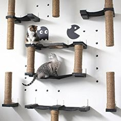 CatastrophiCreations Floating Sisal for Cat Post Step Handcrafted Natural Cat Shelf Diy Cat Hammock, Cat Heaven, Diy Cat Tree, Interactive Cat Toys, Cat Run, Cat Playground, Cat Climbing, Cat Condo, Space Cat