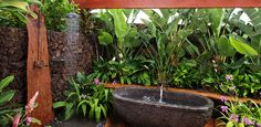 outdoor tub & shower Need Tub Filler and Shower head that can go outside