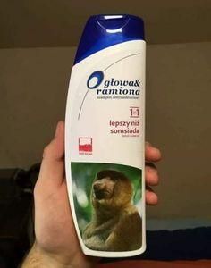 Memy, co mogę więcej powiedzieć? Polish Memes, Weekend Humor, Very Funny Memes, Funny Mems, Car Memes, Really Funny, Fnaf, Poland, Laughter