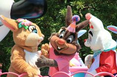 Disney's Easter Bunnies. Eggcellent ways to spend your Easter at Disney World!