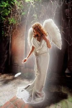 A feather floats down where we stand... It is a gift to us from our angel's hand.